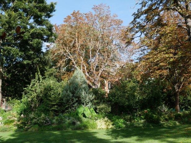 le-jardin-des-plantes-toulouse-massif-et-arbre