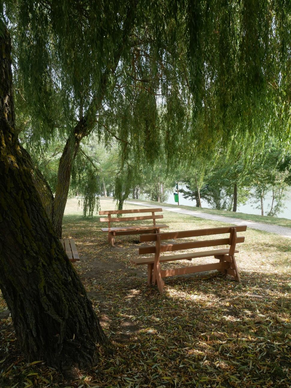 Lac-de-Flourens-4