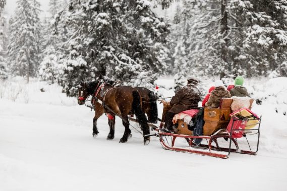 Neige-en-famille-pyrenees-traineau-cheval